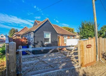Thumbnail 2 bed detached bungalow for sale in Chapel Lane, St. Osyth, Clacton-On-Sea