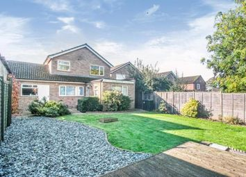 Thumbnail 3 bed detached house for sale in Ely, Cambridgeshire