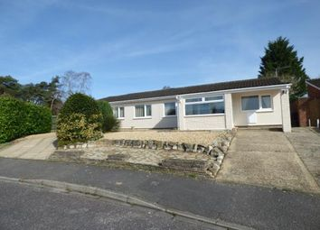Thumbnail 4 bed bungalow for sale in Holly Close, St. Leonards, Ringwood
