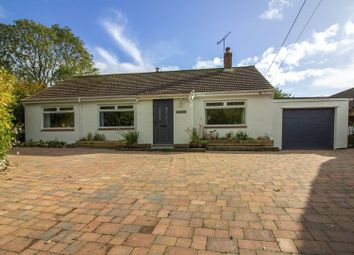 Thumbnail 4 bed detached bungalow for sale in High Street, Maiden Bradley, Warminster