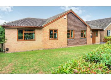 Thumbnail 4 bed detached bungalow for sale in Highland Drive, Basingstoke
