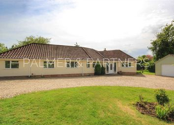Thumbnail 3 bed detached bungalow for sale in Gordon Hills, Slough Lane, Little Cornard