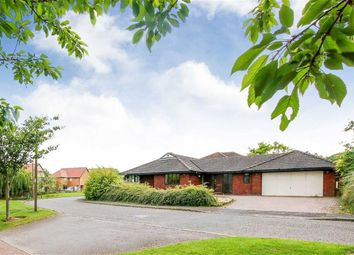 Thumbnail 4 bedroom detached bungalow for sale in Chawton Crescent, Great Holm, Milton Keynes