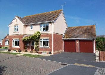 Thumbnail 4 bed detached house for sale in Constantine Close, Seaton