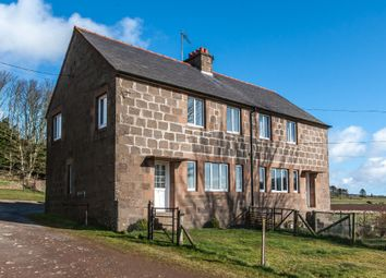 Thumbnail 3 bedroom semi-detached house to rent in Cairnton Cottages, Fordoun, Laurencekirk, Aberdeenshire