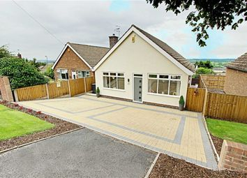 Thumbnail 3 bed detached bungalow to rent in Lodge Drive, Chesterfield, Derbyshire