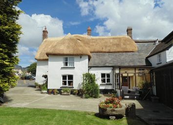Thumbnail 5 bed property for sale in South Street, Sheepwash, Beaworthy