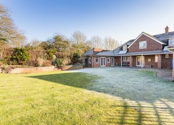 Thumbnail 4 bed detached house to rent in Springmead, Back Lane, Ramsbury, Marlborough