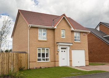 "Thumbnail 4 bed detached house for sale in ""Carrick"" at Ravenscliff Road, Motherwell"