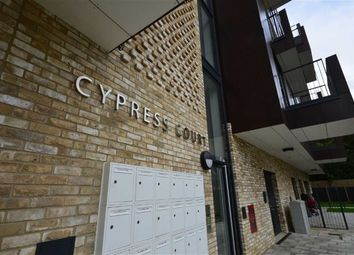 Thumbnail 2 bed flat to rent in Cypress Court, Alpine Road, Kingsbury