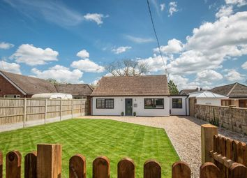 Thumbnail 3 bed detached bungalow for sale in The Avenue, Horning, Norwich