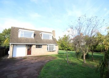 Thumbnail 3 bed detached house to rent in Bedford Road, Marston Moretaine