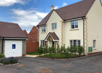 Thumbnail 4 bed detached house for sale in Auckland Close, Wells