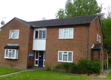 Thumbnail Studio to rent in Celendine Drive, Luton