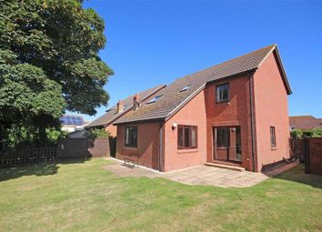 Thumbnail 4 bedroom detached house for sale in Anchorage Close, Wall Park Area, Brixham
