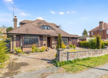 Thumbnail 4 bed detached bungalow for sale in Carden Avenue, Brighton
