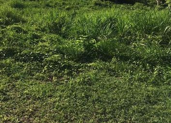 Thumbnail Land for sale in Duncans, Trelawny, Jamaica