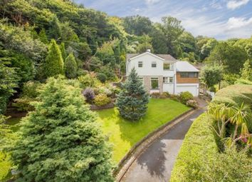Thumbnail 3 bed detached house for sale in Ilsham Crescent, Torquay