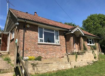 Thumbnail 2 bed detached bungalow to rent in Long Close Farm, Milton Abbas, Blandford Forum, Dorset