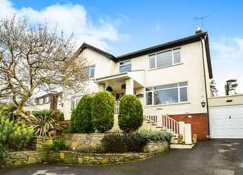 Thumbnail 4 bed detached house for sale in Totnes Road, Newton Abbot
