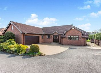 Thumbnail 4 bed bungalow for sale in Cherry Garth, Campsall, Doncaster