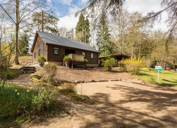 Thumbnail 2 bed lodge for sale in Altamount Gardens, Blairgowrie, Perthshire