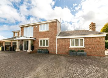 Thumbnail 4 bedroom detached house to rent in 38 Stonehaugh Way, Darras Hall, Ponteland, Northumberland