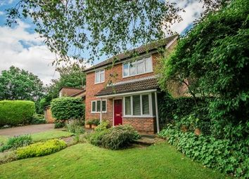 Thumbnail 4 bed property to rent in Twycross Road, Godalming