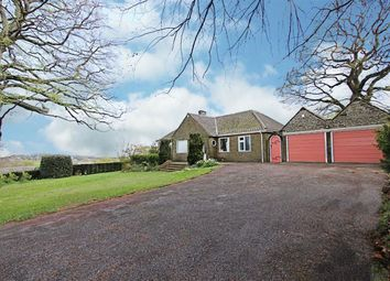 Thumbnail 4 bed detached bungalow to rent in Matlock Road, Walton, Chesterfield, Derbyshire