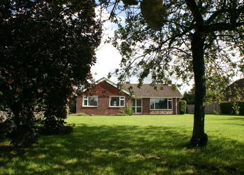 Thumbnail 3 bed bungalow to rent in Bower Road, Mersham, Ashford