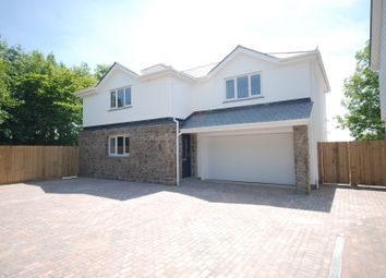 Thumbnail 4 bed detached house for sale in Rectory Close, Buckland Brewer, Bideford