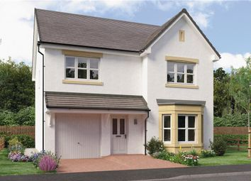 "Thumbnail 4 bed detached house for sale in ""Dale"" at Springhill Road, Barrhead, Glasgow"