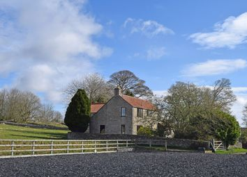 Thumbnail 3 bed detached house for sale in Old Byland, York