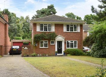 Thumbnail 4 bed detached house for sale in Firwood Drive, Camberley, Surrey.