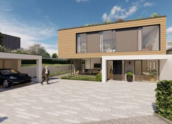 Thumbnail 5 bedroom detached house for sale in Wingate Lane, Long Sutton, Hook