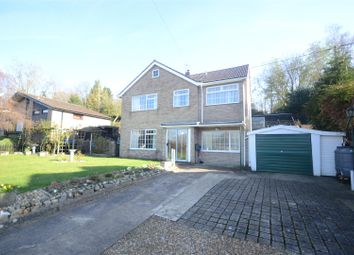 Thumbnail 4 bed detached house for sale in Lamas, Norwich