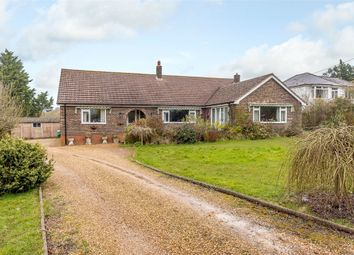 Thumbnail 4 bed detached bungalow for sale in Ningwood Hill, Cranmore, Yarmouth, Isle Of Wight