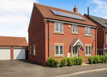 Thumbnail 4 bed detached house for sale in Millport Drive, Eye, Peterborough