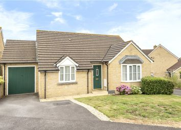 Thumbnail 3 bed detached bungalow for sale in Horn Hill View, Beaminster, Dorset