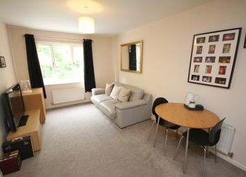 Thumbnail 1 bed flat to rent in St. Matthews Close, Renishaw, Sheffield