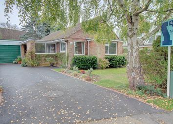 Thumbnail 3 bed bungalow for sale in Gaggle Wood, Mannings Heath, Horsham