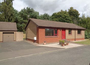 Thumbnail 3 bed semi-detached bungalow to rent in Lovat Road, Glenrothes, Fife