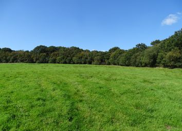 Thumbnail Land for sale in Meshaw, Devon