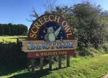 Thumbnail Leisure/hospitality for sale in Screech Owl Widlife Park, Goss Moor, St Columb, Cornwall