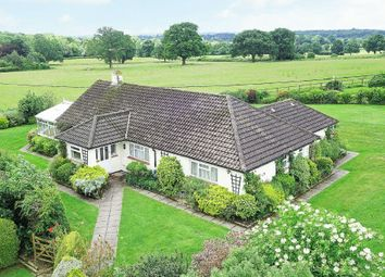 Thumbnail 4 bedroom detached bungalow for sale in Guildford Road, Rudgwick, Horsham