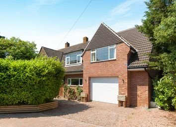 Thumbnail 6 bed detached house for sale in Gorse Lane, Exmouth