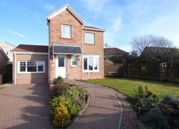Thumbnail 3 bed detached house for sale in 21, Rowan Lane, Leven