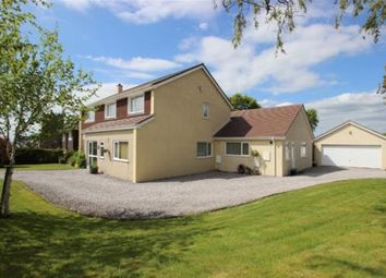 Thumbnail 4 bed detached house for sale in Powisland Drive, Derriford, Plymouth