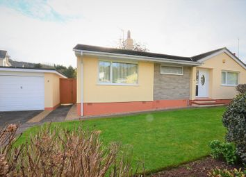 Thumbnail 2 bed bungalow for sale in Chestnut Drive, Brixham