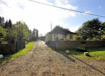 Thumbnail 2 bed detached bungalow for sale in Green Lane, Staines, Middlesex